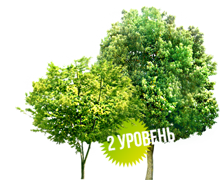 В парке рубят деревья